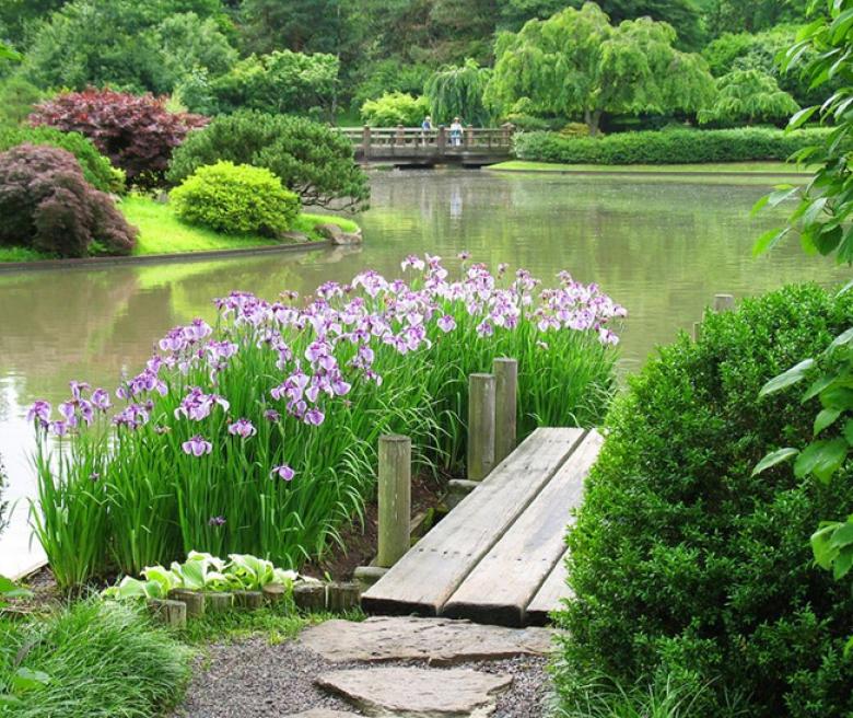 Красивый сад от ландшафтного дизайнера